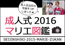 成人式 2016 マリエ図鑑