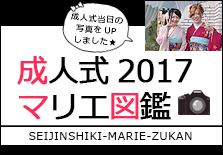 成人式 2017 マリエ図鑑