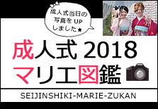成人式マリエ図鑑2018
