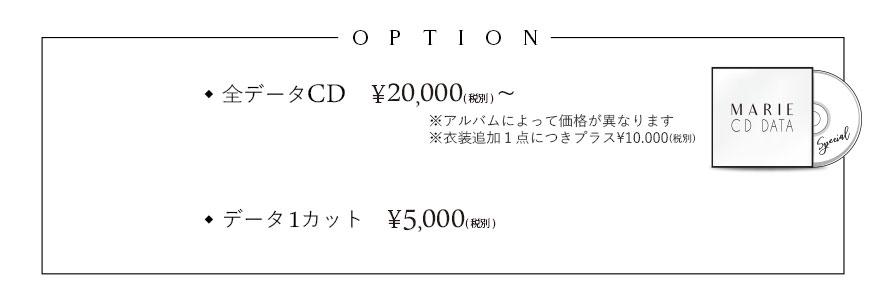 成人式アルバム価格4